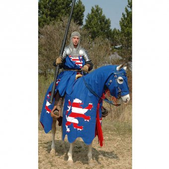 Horse trapper, knight surcoat and a banner