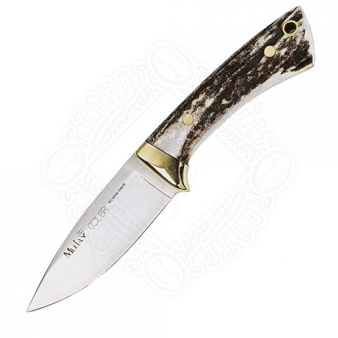 Muela knife - Modell Colibri - Hunting knife