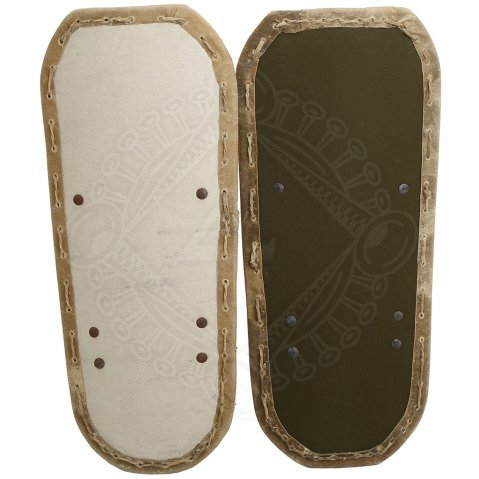 French offensive HMB Shield