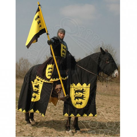 Horse Caparison, banner and a knight surcoat