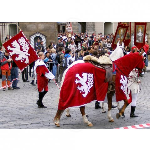 Horse Trappers, banner and a surcoat