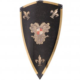Shield Charles V, de luxe
