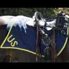 US calvary saddle blanket, US Civil War