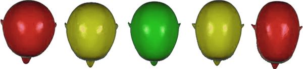 Kopftypen